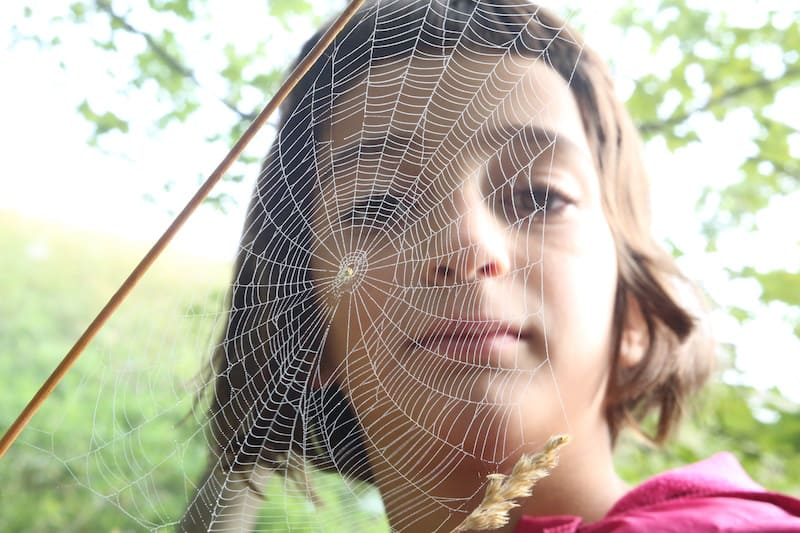 Green Agenda - Ecological Democracy - Girl - Spider Web